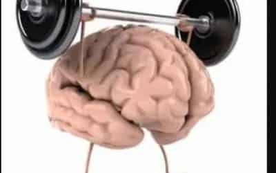 Habits: Are yours building mental muscle?