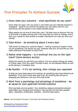 NLP Principles to success