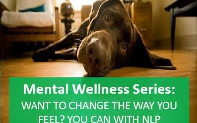 Want to change the way you feel? … you can with NLP Anchoring